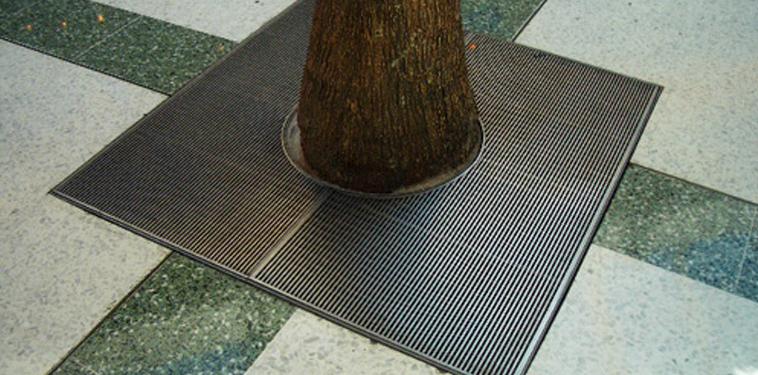 image-tree-grates